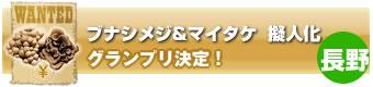 ブナシメジ&マイタケ擬人化グランプリ